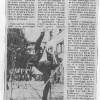 1981 Dan Mladosti